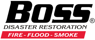 Boss Disaster Restoration Company Logo